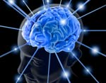 В мозгу нашли область, отвечающую за выработку репутации
