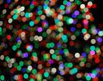 На главной елке США зажглись праздничные огни
