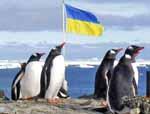 Жители Востока и Юга Украины могут ходить на курсы украинского языка