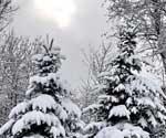 Погода внесла свои коррективы в движение транспорта