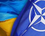 НАТО понравилось иметь дело с Украиной в этом году