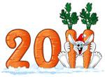 Про Новый 2011 Год