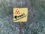 Беларусь решила эксплуатировать земли чернобыльской зоны