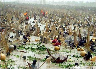 Ритуалы. Рыбалка в Нигерии и Лагос