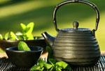Зеленый чай способствует росту груди