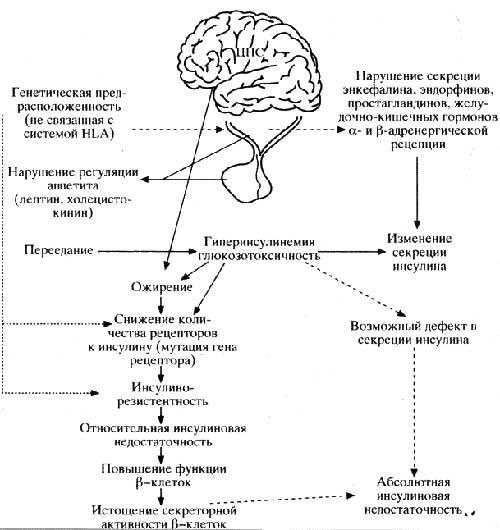 Возможные механизмы патогенеза инсулинзависимого сахарного ди- абета II типа.