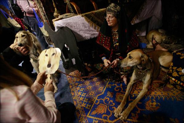Заводчица собак породы салуки и ее питомица Рина. AP / Mary Altaffer