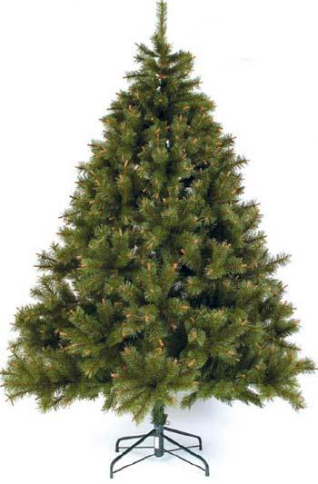 Как выбрать и сохранить дольше новогоднюю елку