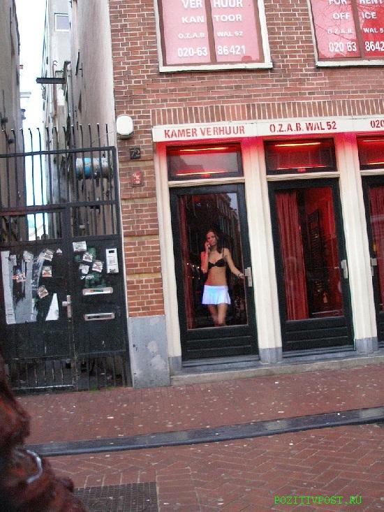 Голландские проститутки. Самая многочисленная популяция. Охраняются  государством. Обитают в строго отведённых местах